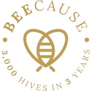 BEECAUSE 3,000 HIVES IN 3 YEARS